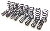 Dual racing springs for over .550